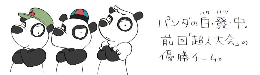 05_panda